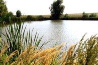 Silniční rybník 2