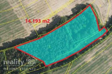 Prodej, Lesy, 14193m² - Křečovice - Nahoruby, Ev.č.: 00333