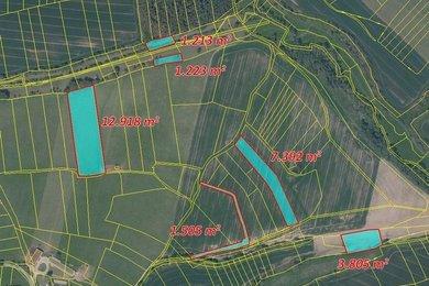 Prodej, Zemědělská půda, 53481m² - Slapsko - Moraveč, Ev.č.: 00342