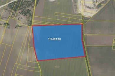 Prodej, Zemědělská půda, 117693m² - Černuc - Miletice, Ev.č.: 00374