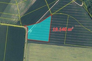 Prodej, Zemědělská půda, 22385m² - Hořesedly, Ev.č.: 00377