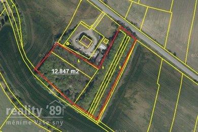 Prodej, Lesy, 12847m² - Černuc, Ev.č.: 00378