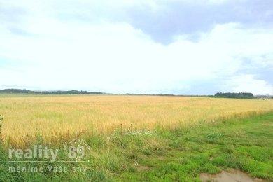 Prodej, Pozemky pro bydlení, 3953m² - Čestlice, Ev.č.: 00410
