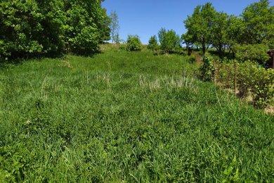 Prodej, Pozemky - zahrady, 1799m² - Javorník, Ev.č.: 14/2020