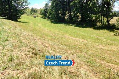 Prodej pozemku o výměře 20024 m², Horní Václavov, Ev.č.: 01066