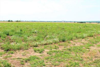 Prodej, Pozemky pro bydlení, 826m² - Lutín, Ev.č.: 01526