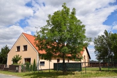 Prodej, Zemědělská usedlost, 570m² - Lipník, Ev.č.: 00008