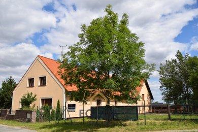 Prodej, Zemědělská usedlost, 570m² - Lipník