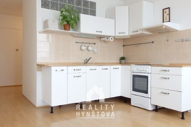 Prodej, Byt 2+1 s nádherným výhledem a po částečné rekonstrukci, vhodný k investici, CP 48 m² , ul. Okružní, Blansko, Ev.č.: 19010261