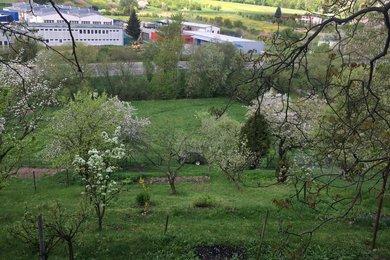 Pronájem slunné zahrady v Boskovicích o velikosti 545m², Ev.č.: 20010316