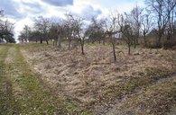 Prodej pozemku - zahrady, 1316 m² - Luleč