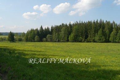 Prodej, Lesy, 33151m² - Brandýs nad Orlicí, Ev.č.: 00323