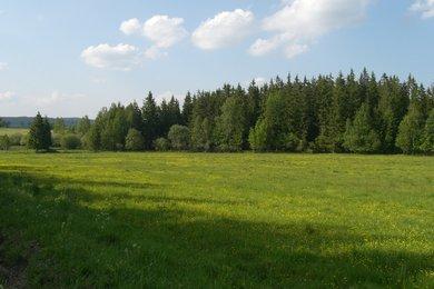 Prodej, Lesy, 127777m² - Podhořany u Ronova, Ev.č.: 00357