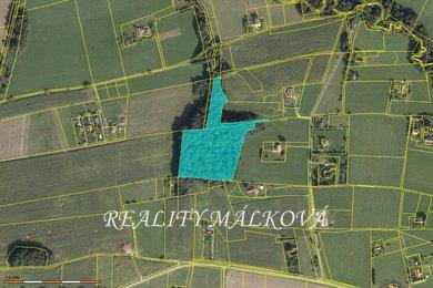 Prodej, Lesy, 25656m² - Janovice, Ev.č.: 00359