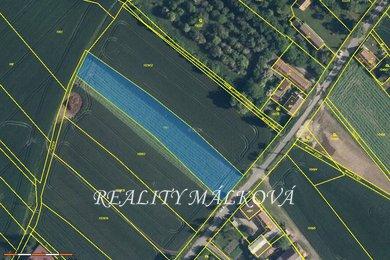 Prodej, Pozemky pro bydlení, 3111m² - Bělušice, Ev.č.: 00372