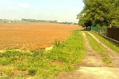 Prodej, pozemek zemědělská půda, 3675m², Ev.č.: OV0008