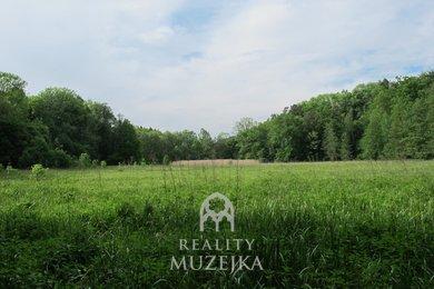 Prodej pozemku - trvalý travní porost,  22 887 m²- Ostrava - Plesná, Ev.č.: 000895