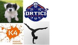 Podporujeme psí útulek a sportovní oddíly v Hodoníně