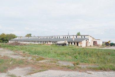 Prodej, komerční pozemek, CP 9300m2, obec Zaječí, okres Břeclav, Ev.č.: 00082