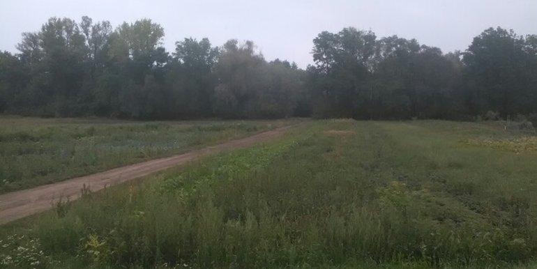 Pohled ze silnice na pozemek