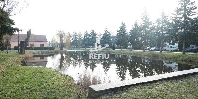 Rybník před domem I