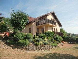 Rodinný dům 6+kk s poz. 902 m2 - Beroun - Město