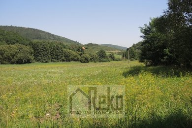 Prodej, Pozemky pro bydlení, 23803m² - Vráž, Ev.č.: 01886