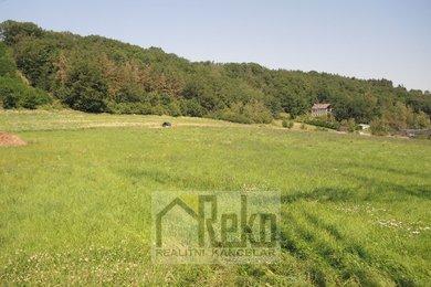 Prodej, Pozemky pro bydlení, 19116m² - Vráž, Ev.č.: 01906