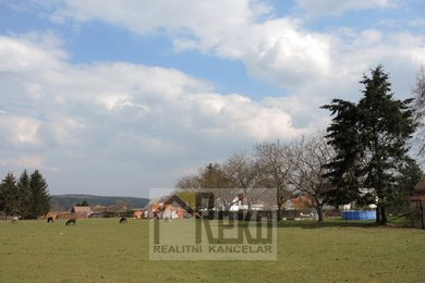Prodej, Pozemky pro bydlení, 7155m² - Sebečice - Biskoupky, Ev.č.: 01985