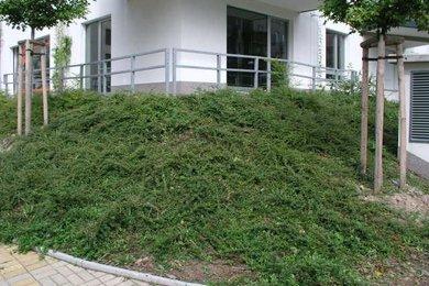Pronájem, Obchodní prostory, 59m² - Praha, Ev.č.: 02040
