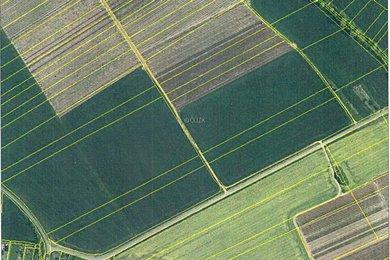 Prodej, Ostatní pozemky, 450761m² - Nesuchyně, Ev.č.: 02113