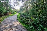 N49137_Park zelené údolí