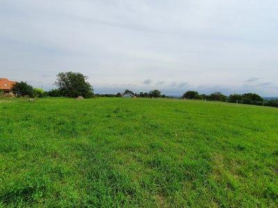 Prodej, Pozemky pro bydlení, 2256m² - Horka