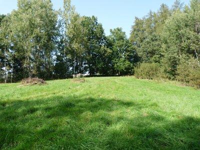 Pronájem, Pozemky - trvalý travní porost, 3512m² - Liberec XXX-Vratislavice nad Nisou
