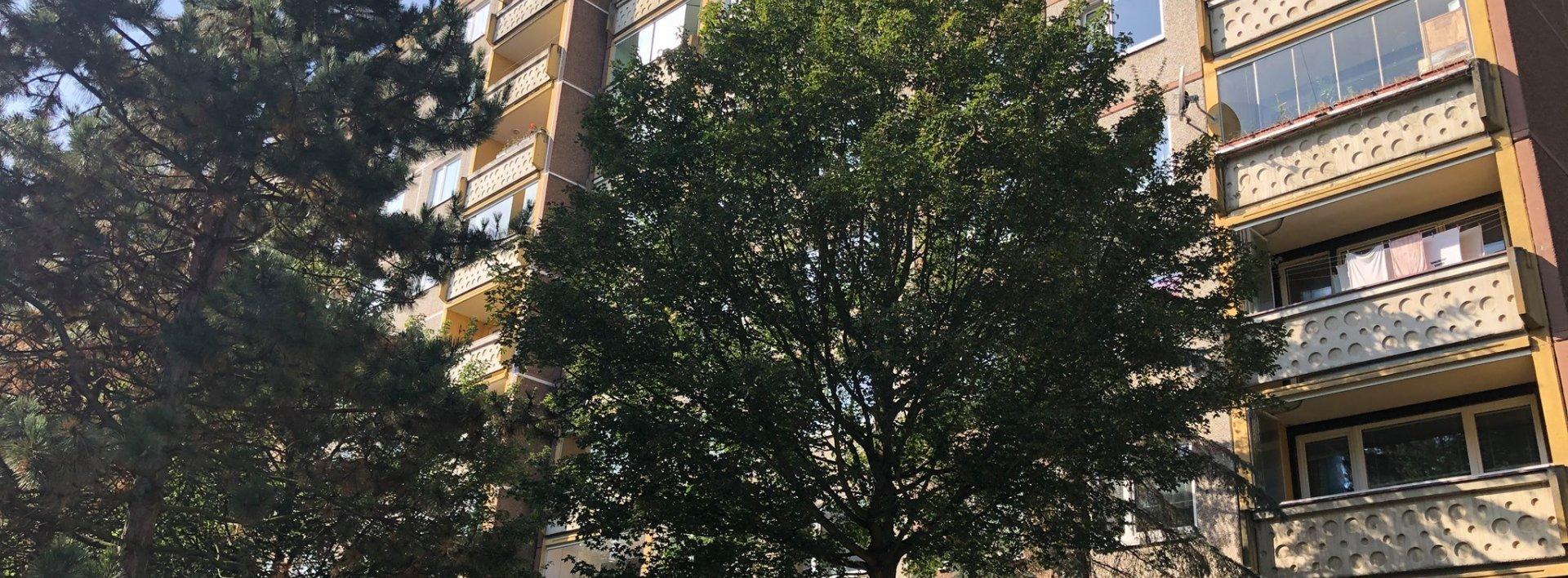 Pronájem slunného bytu 1+1 v Liberci - ul. Skalní, Ev.č.: N49192