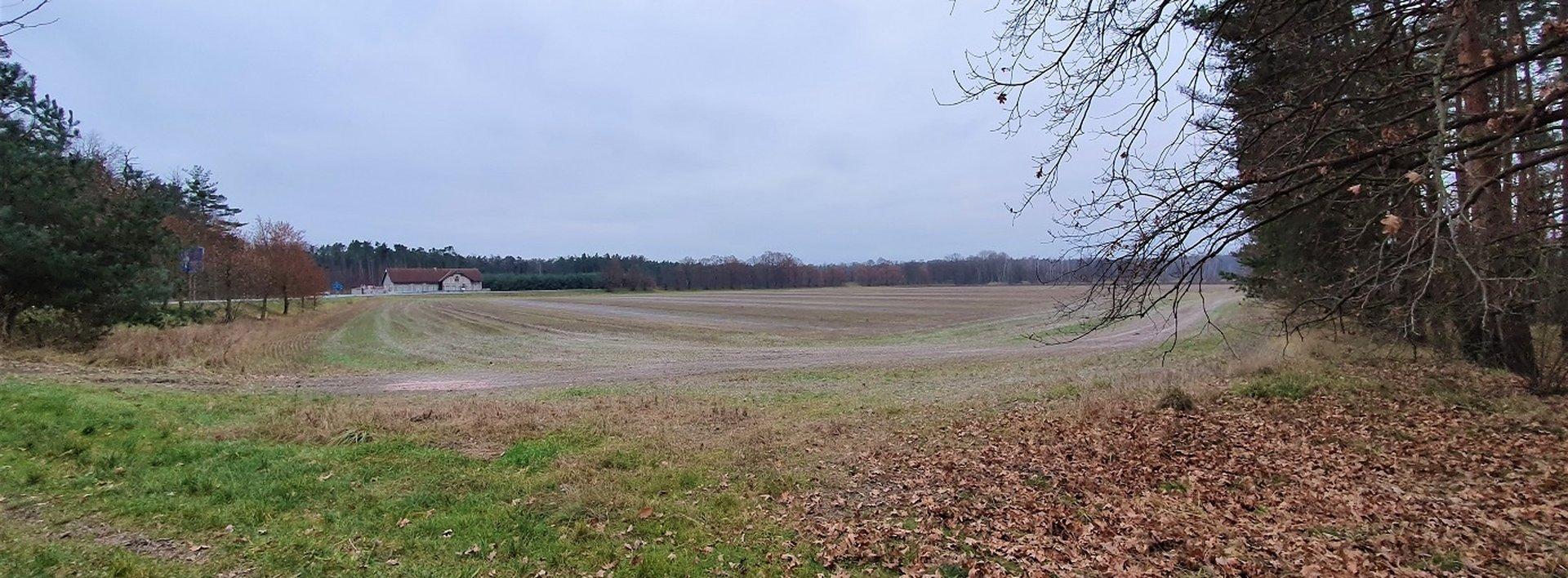 Prodej orné půdy, 4669 m² - Živanice - Nerad