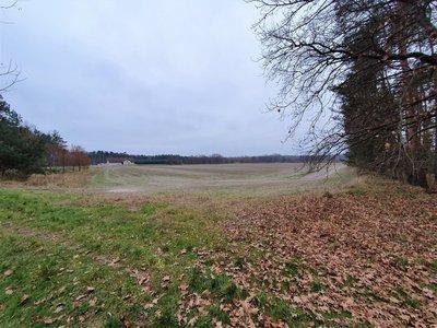 Prodej, Zemědělská půda, 4669m² - Živanice - Nerad