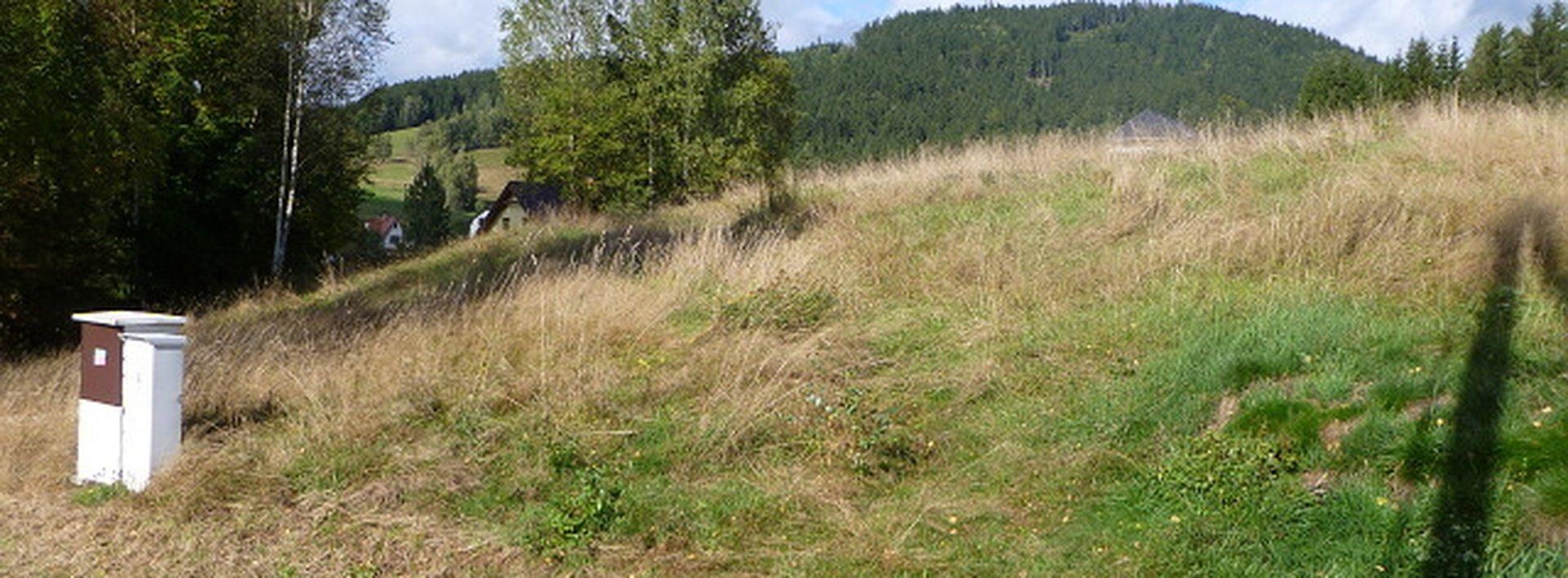 Prodej stavebního pozemku 2.722 m2,Horní Tanvald., Ev.č.: N46610