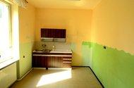 N46689_kuchyň v 1.NP