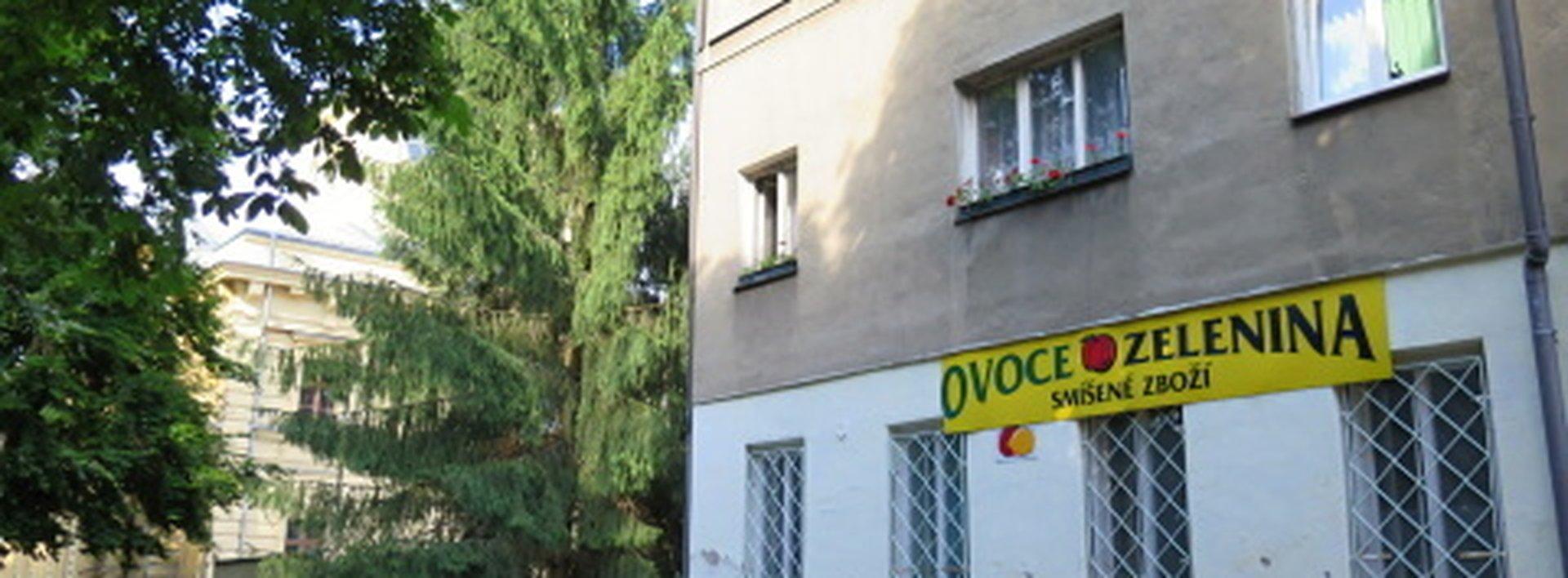 Byt 2+1 v cihlovém domě se zahradou, Ev.č.: N46806