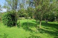 N46891_zahrada 1