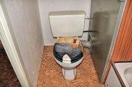 N46972_záchod