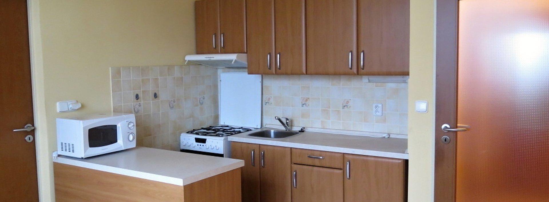 Zrekonstruovaný byt 1+1 v OV, Ev.č.: N47037