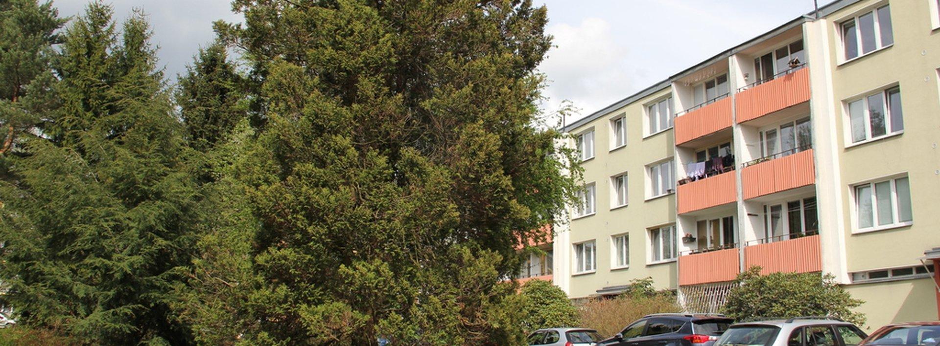 Pronájem bytu 2+1 s lodžií o velikosti 55  m², Ev.č.: N47418