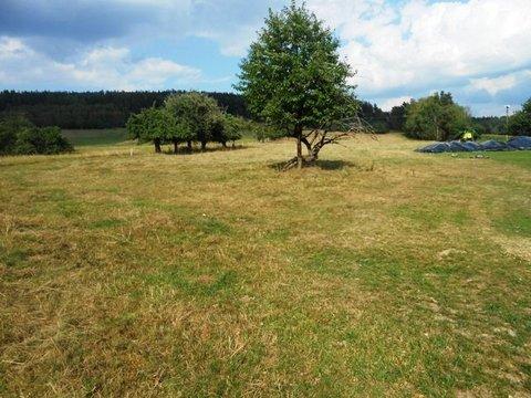 Prodej pozemků ve Všelibicích u Českého Dubu