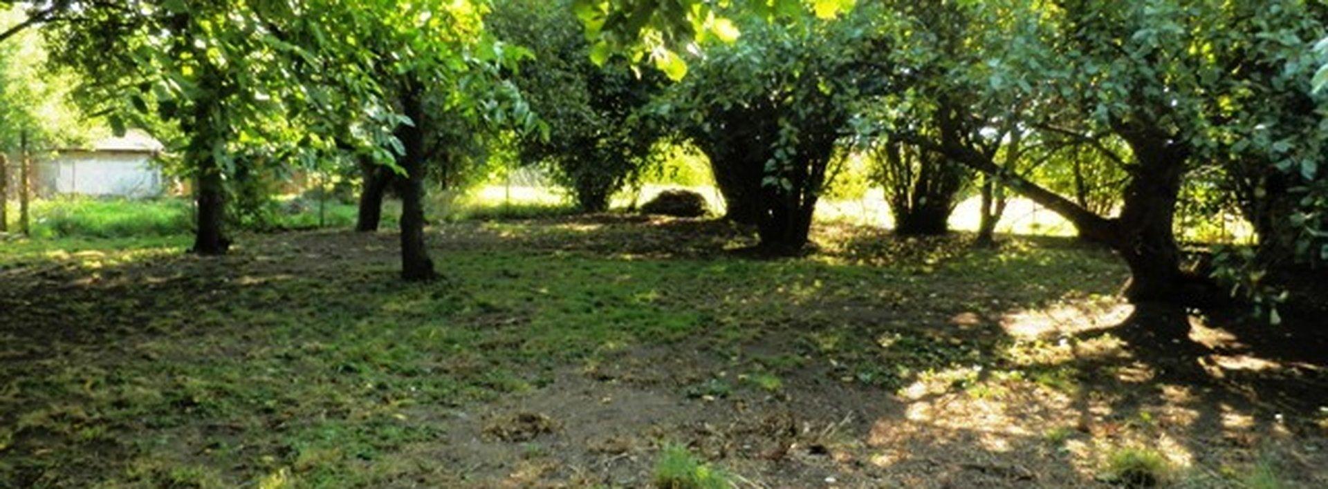 Prodej výjimečného pozemku na okraji Lázní Bohdaneč, 1317 m2, Ev.č.: N47423