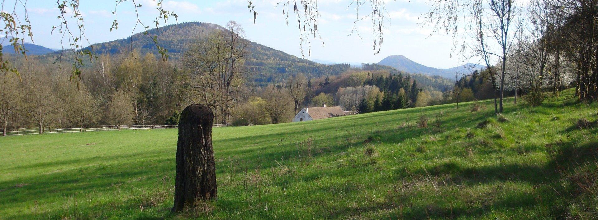 Prodej pozemku v obci Trávník u Cvikova, 3824 m², Ev.č.: N47543