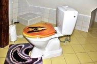 N47643_koupelna_toaleta