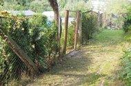 N47866_zahrada_vstupní cesta