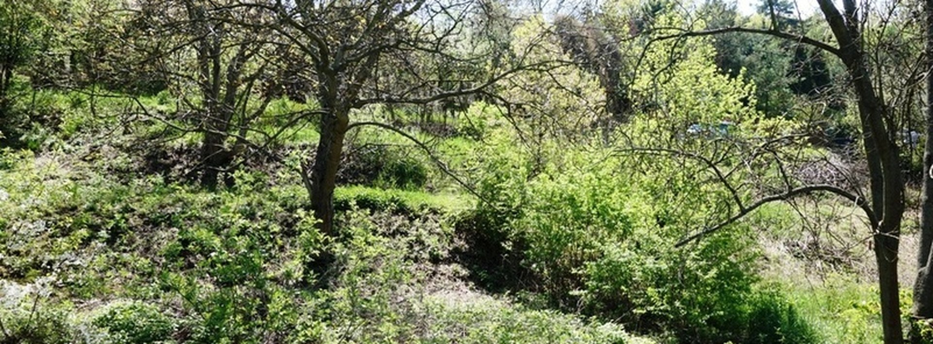 Pozemky v krásném místě u Horoměřic, 890 m², Ev.č.: N47977